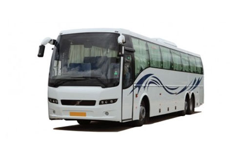Coaches & Buses Rental